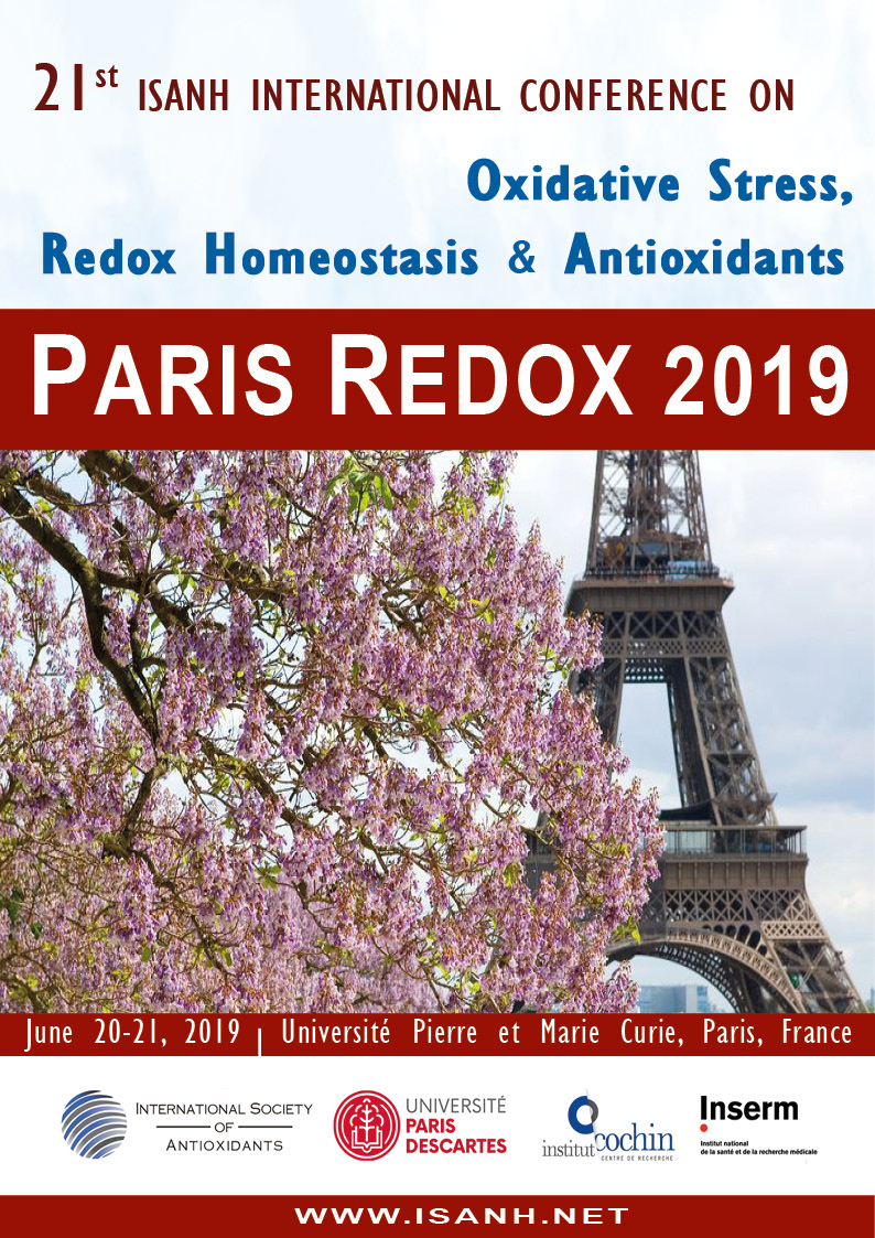 Redox 2019 Poster final small